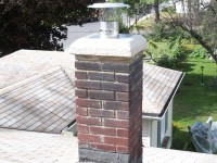 Renovated chimney :: Finished liner and crownseal